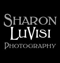 Sharon LuVisi Photography